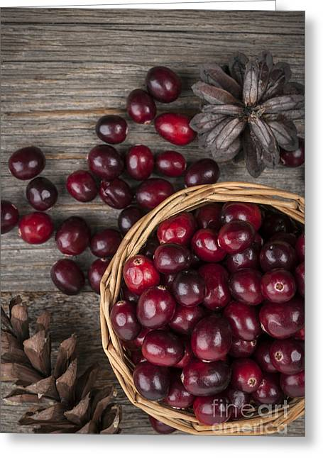 Red Berries Greeting Cards - Cranberries in basket Greeting Card by Elena Elisseeva
