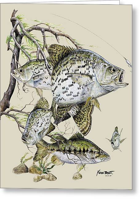 Kevin Brant Greeting Cards - Crappie and Bass Greeting Card by Kevin Brant