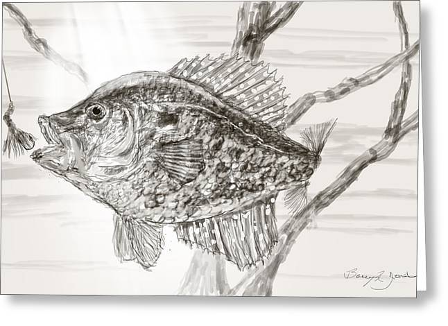 Game Greeting Cards - Crappie Time Greeting Card by Barry Jones