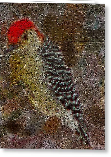 Photos Of Birds Mixed Media Greeting Cards - Craquelure Woodpecker Greeting Card by Debra     Vatalaro
