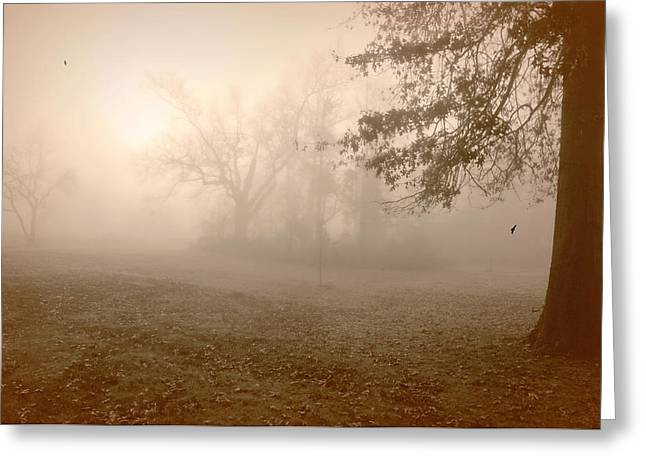 Crawford Fog Greeting Card by Diana Angstadt