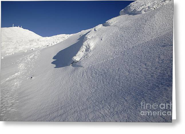 Crawford Path - White Mountains New Hampshire Greeting Card by Erin Paul Donovan