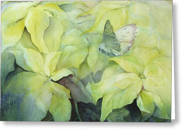 Cream Poinsettia With Butterfly Greeting Card by Karen Armitage