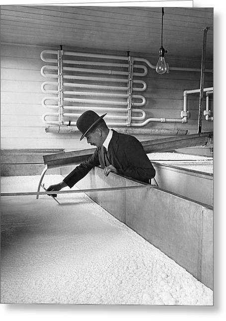 Dairy Factories Greeting Cards - Cream Ready To Be Butter Greeting Card by Underwood Archives