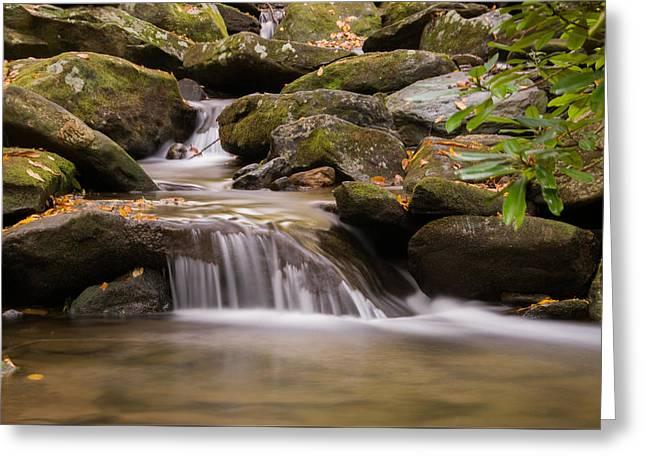 Fall Scenes Greeting Cards - Creek 1 Greeting Card by Joye Ardyn Durham