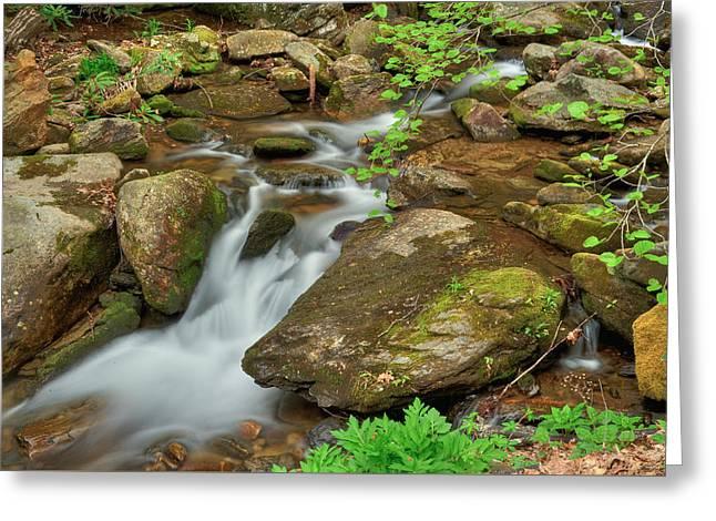 Fall Scenes Greeting Cards - Creek 10 Greeting Card by Joye Ardyn Durham