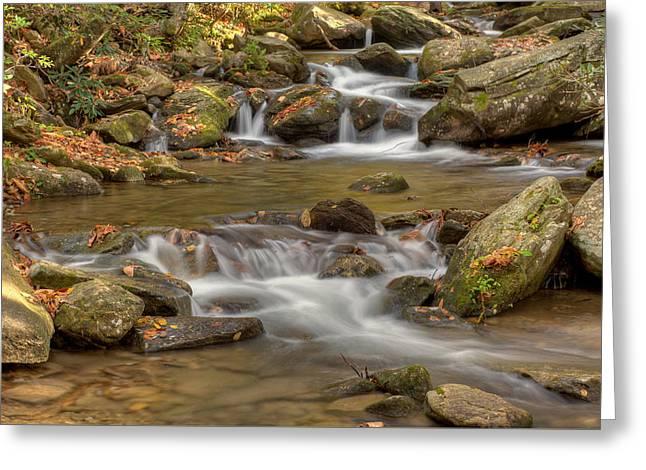 Fall Scenes Greeting Cards - Creek 7 Greeting Card by Joye Ardyn Durham
