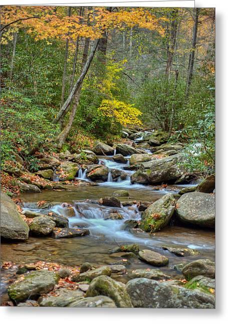 Fall Scenes Greeting Cards - Creek 8 Greeting Card by Joye Ardyn Durham