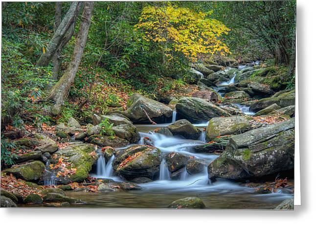 Fall Scenes Greeting Cards - Creek 9 Greeting Card by Joye Ardyn Durham