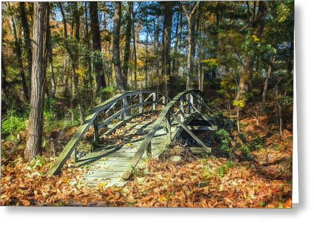 Creek Crossing Greeting Card by Tom Mc Nemar