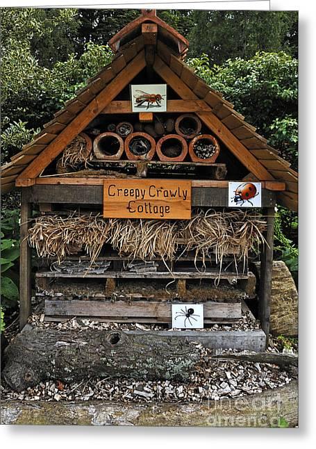 Creepy Crawly Cottage Greeting Card by Helmut Meyer zur Capellen