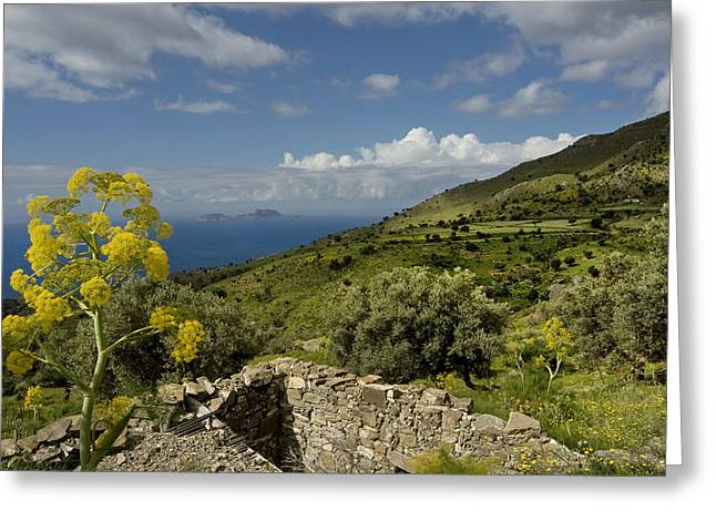 Crete Greeting Cards - Crete Greeting Card by Robert Lacy