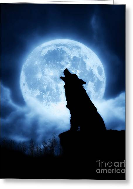 The Blue Moon Boys Greeting Cards - Cries of the Night Greeting Card by Julie Fain
