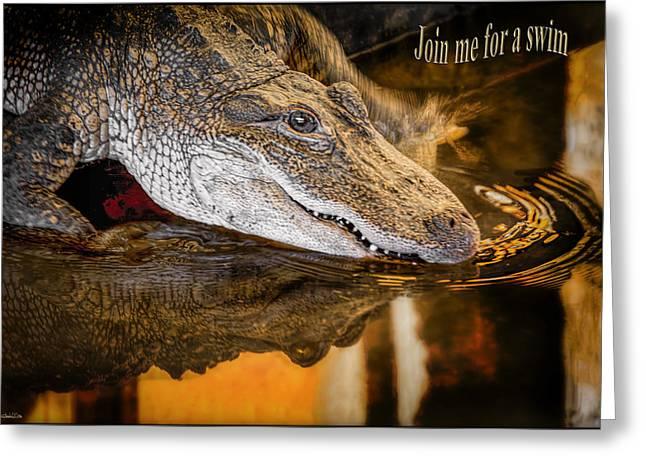 Coldblooded Greeting Cards - Croc Join me for a Swim Greeting Card by LeeAnn McLaneGoetz McLaneGoetzStudioLLCcom