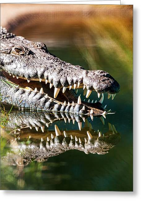 Carnivorous Greeting Cards - Crocodile With Sharp Teeth Greeting Card by Susan  Schmitz