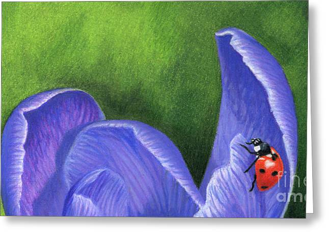 Crocus And Ladybug Detail Greeting Card by Sarah Batalka