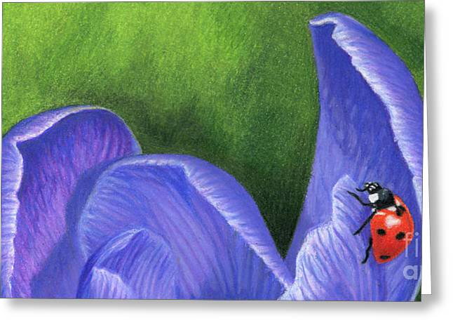 Crocus And Ladybug Detail Greeting Card by Sarah Batalka