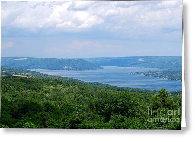 Crooked Lake Bluff Of Keuka Lake Greeting Card by Alisa Potter