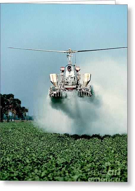 Crop Dusters Greeting Cards - Cropdusting Greeting Card by Inga Spence