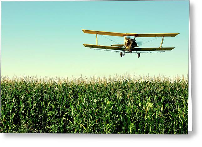 Crops Dusted Greeting Card by Todd Klassy