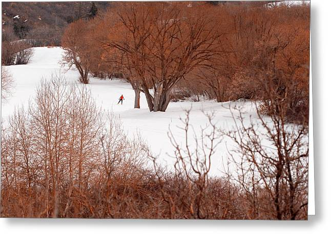Solitary Activities Greeting Cards - Crosscountry Skier Greeting Card by Utah Images