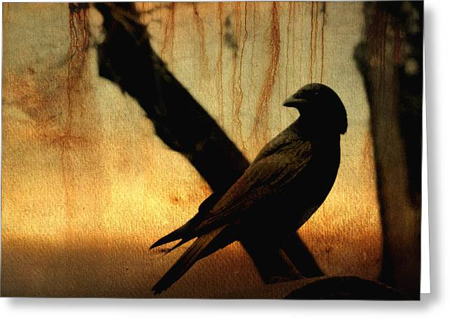 Gothicrow Greeting Cards - Crossed With A Gothic Sunset Greeting Card by Gothicolors Donna Snyder