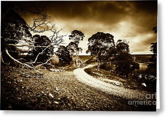 Crossing The Bleak Greeting Card by Jorgo Photography - Wall Art Gallery