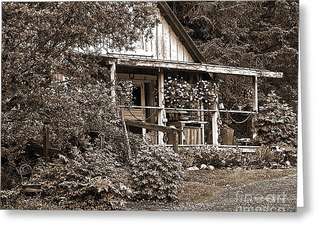 Pioneer House Greeting Cards - Crow Creek Spring Greeting Card by Diane E Berry