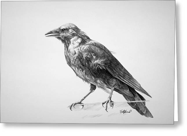 Black Drawings Greeting Cards - Crow Drawing Greeting Card by Steve Goad