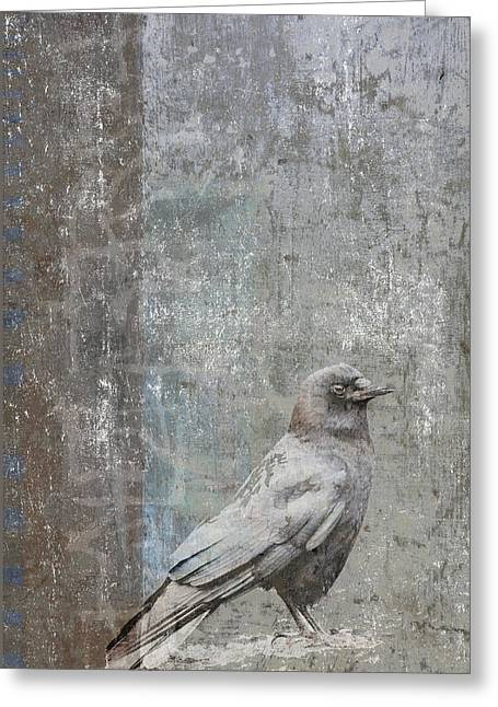 Crow In Grey Flannel Greeting Card by Carol Leigh