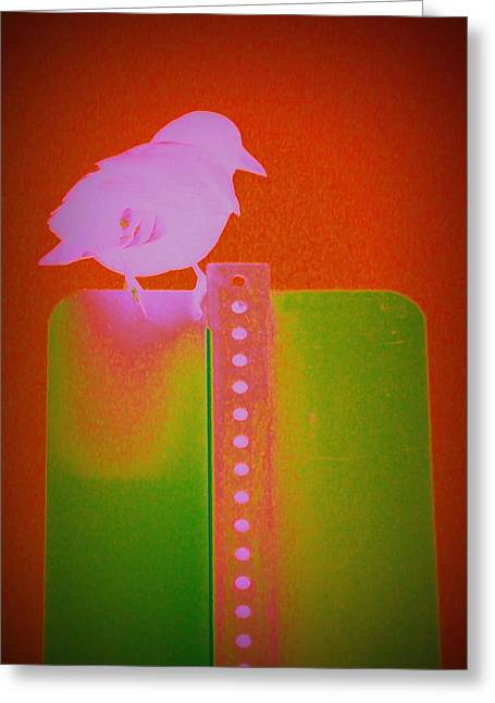Enhanced Mixed Media Greeting Cards - Crow LSD Greeting Card by Donna Cox