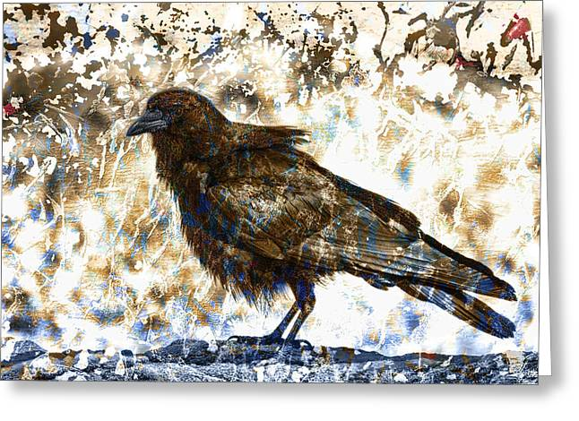 Crow On Blue Rocks Greeting Card by Carol Leigh