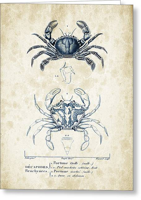 Fossil Greeting Cards - Crustaceans - 1825 - 03 Greeting Card by Aged Pixel