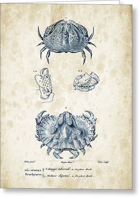 Crayfish Greeting Cards - Crustaceans - 1825 - 08 Greeting Card by Aged Pixel
