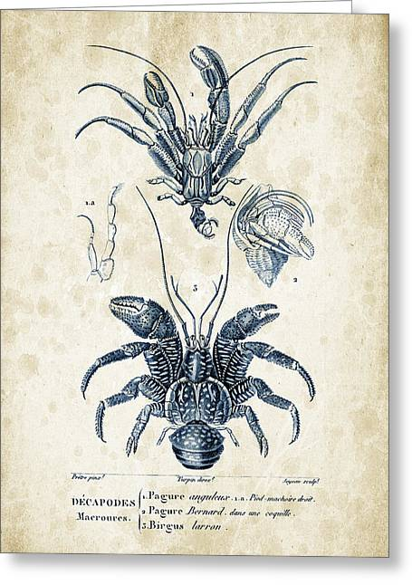 Crayfish Greeting Cards - Crustaceans - 1825 - 28 Greeting Card by Aged Pixel