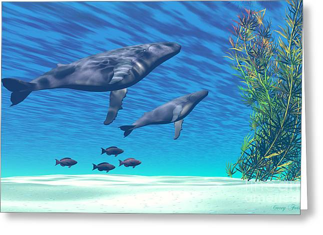 Crystal Clear Greeting Card by Corey Ford