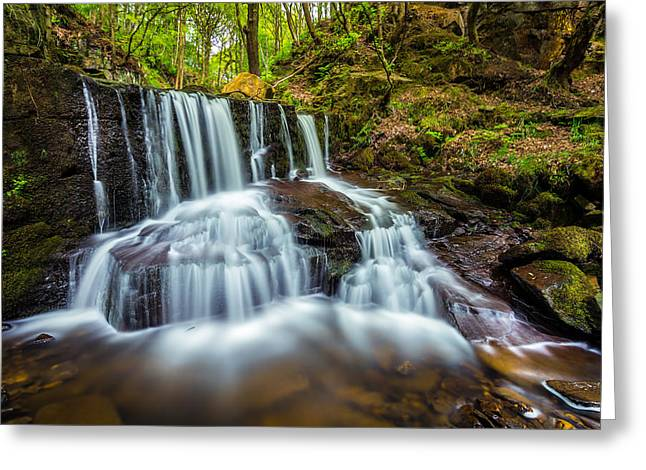 Woods Greeting Cards - Crystal Clear. Greeting Card by Daniel Kay