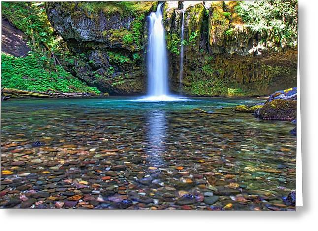 Moss Greeting Cards - Crystal Clear Greeting Card by Steve Luther