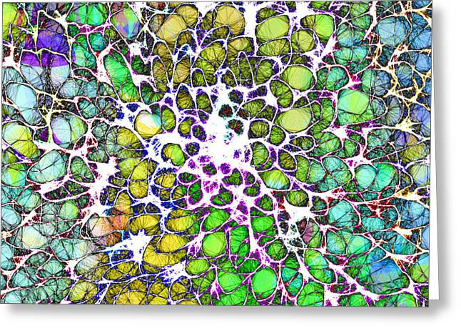 Chakra Rainbow Digital Greeting Cards - Crystal Musings 3 Greeting Card by Dorothy Berry-Lound