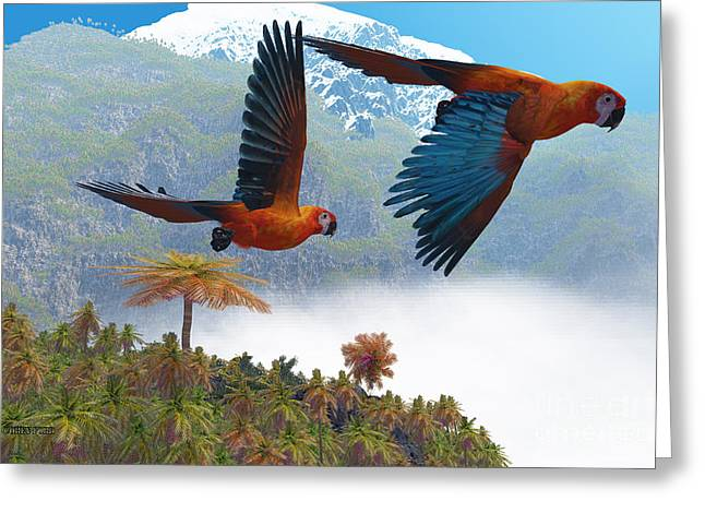 Bipedal Greeting Cards - Cuban Red Macaw Greeting Card by Corey Ford