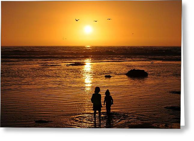 Half Moon Bay Greeting Cards - Curiosity in the Bluffs Greeting Card by Gerard Corbett