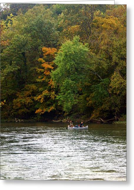 Marty Koch Greeting Cards - Current River 2 Greeting Card by Marty Koch