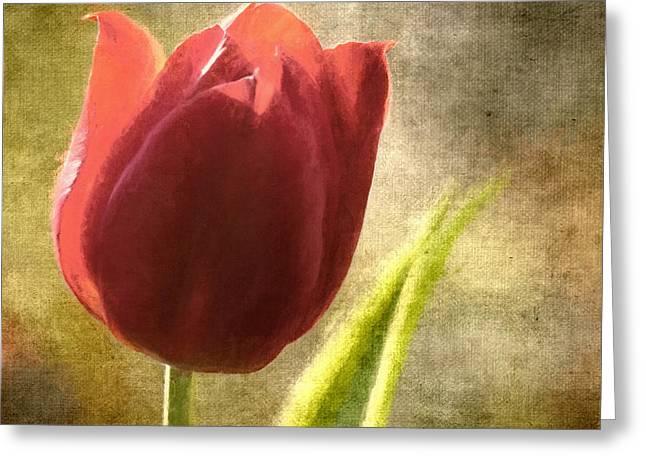 Floral Digital Art Digital Art Greeting Cards - Currently Vintage XVII Greeting Card by Tina Baxter