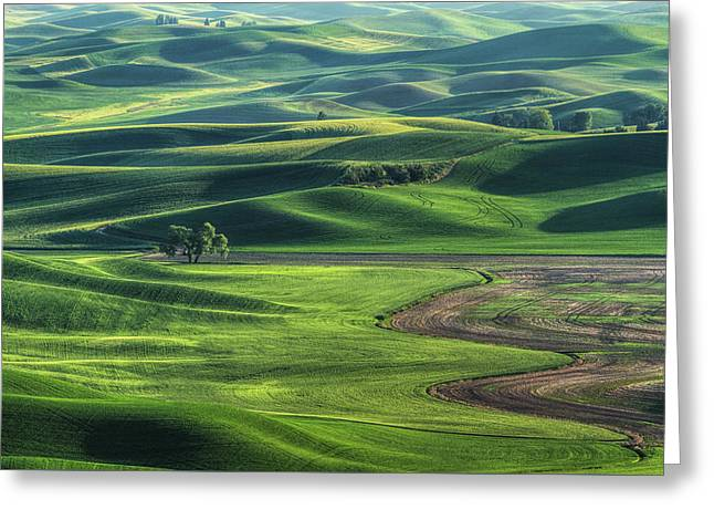 Curves Of The Palouse Greeting Card by Mark Kiver