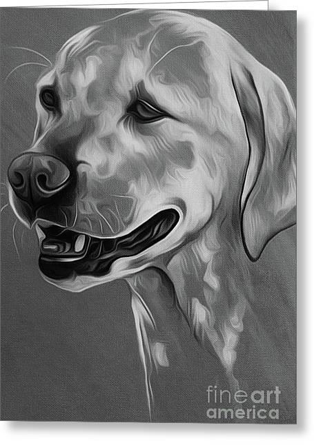 Cute Dog 03 Greeting Card by Gull G