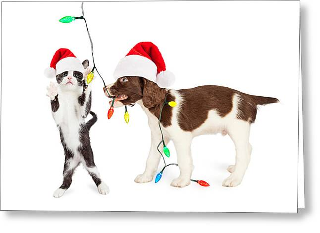 Cute Kitten And Puppy Playing With Christmas Lights Greeting Card by Susan Schmitz