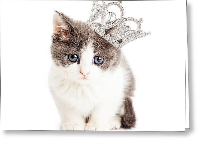 Diamond Background Greeting Cards - Cute Kitten Wearing Princess Crown Greeting Card by Susan  Schmitz
