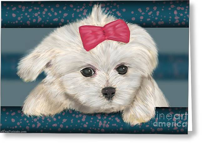 Toy Maltese Digital Art Greeting Cards - Cute Maltese Dog with Creme Fur and Red Ribbon Greeting Card by Idan  Badishi
