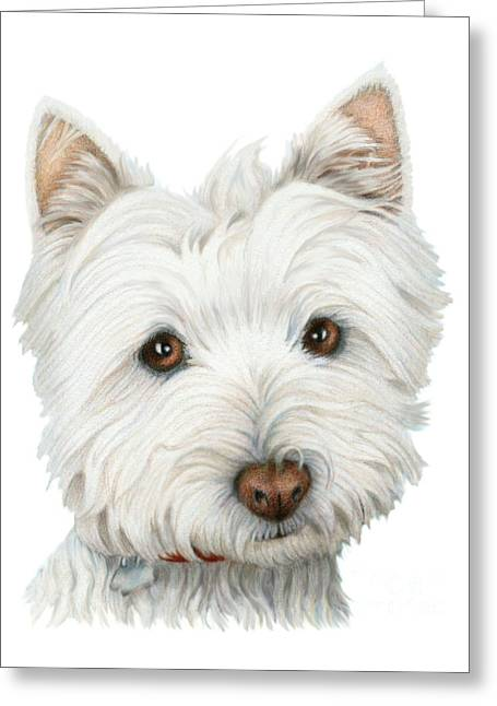 Westie Digital Greeting Cards - Cute Westie Dog Art Greeting Card by Ckeen Art