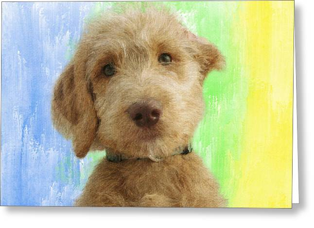 Recently Sold -  - Puppies Digital Greeting Cards - Cuter Than Cute Greeting Card by Diane Chandler